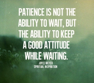 photo credit: https://christiangirlcode.files.wordpress.com/2013/10/patience-is-not-the-ability-to-wait.jpg